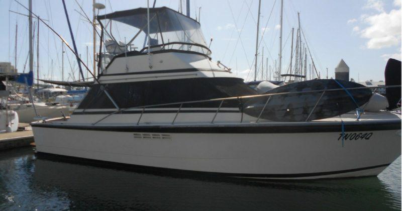 Dominator 38 Boat